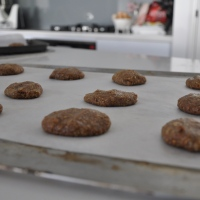 baking love: lactation cookies
