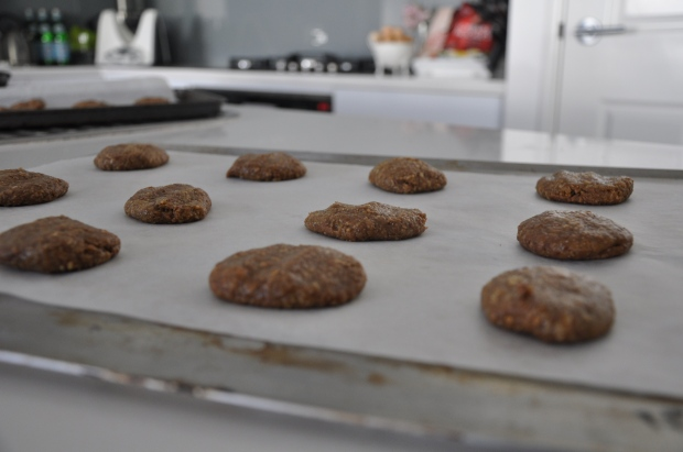 LTL - Lactation Cookies